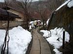 2007年3月二岐温泉・南湖 009.jpg