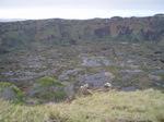2007年8月タヒチ&イースター島 018.jpg