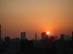 2008年12月27日から30日猫夕陽 006.jpg