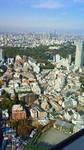 リッツカールトン東京からの眺望.jpg