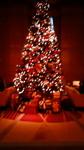 リッツカールトンホテル東京クリスマスツリー.jpg