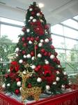 金色トナカイとクリスマスツリー.jpg