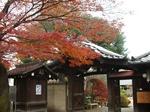 紅葉と瓦屋根.jpg
