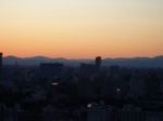 2009年2月1日谷中 空 007.jpg