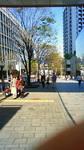 東京タワー遠望 六本木けや木坂ちいばすバス停より.jpg