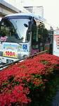 霧島躑躅とちいばす赤坂見附駅バス停.jpg