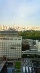 新宿より望む東京スカイツリー201007191755000.jpg