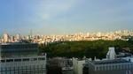東京スカイツリーと新宿御苑201007191755001.jpg