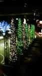 樹々の輝くクリスマスイルミネーション201012022024000.jpg