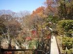 懐古園2010年11月19-21日小諸・小布施 028.jpg