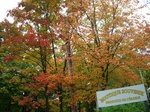メープルの森2010年9月カナダ紅葉ツアー 349.jpg